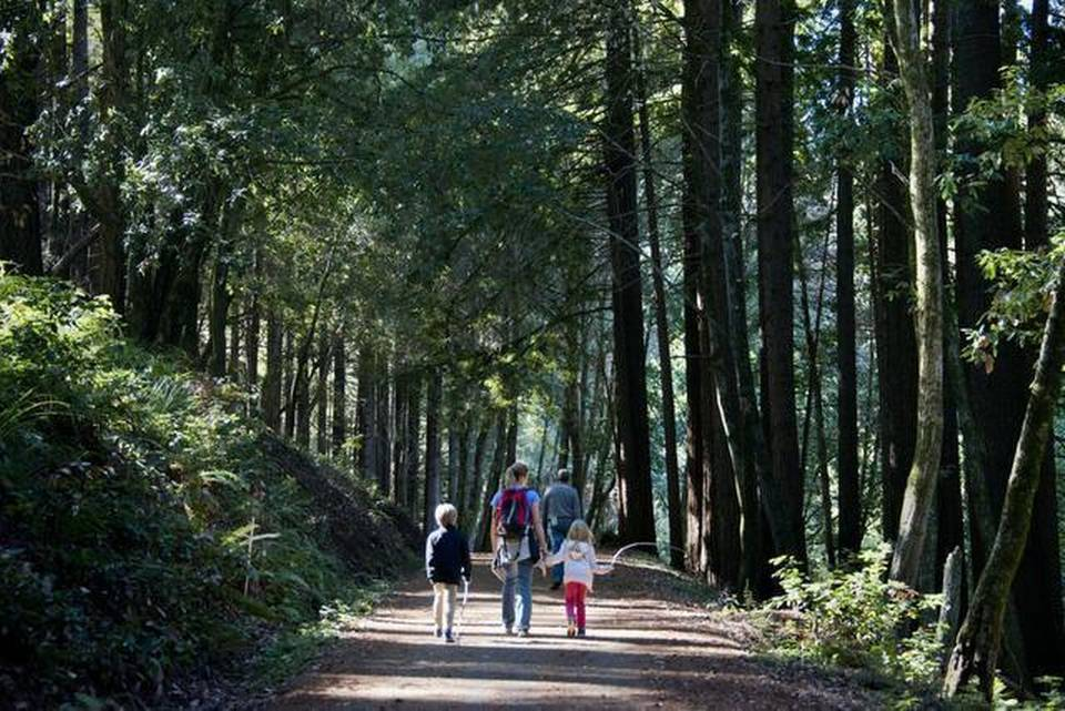 Panel urges overhaul of California parks system